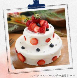 アラベスク舎「スペシャルバースデー2段ケーキ」